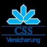 CSS_Logo (1)